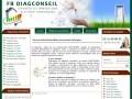 Diagconseil