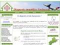 Diagnostic immobilier Toulousain