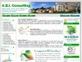 A.B.I Consulting
